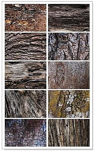 Текстуры Древесной Коры